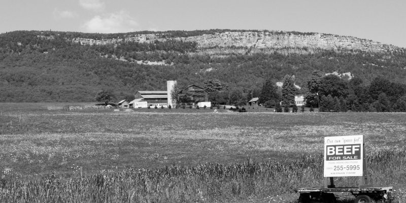The Kiernan Farm at the base of the Shawangunk Mountains.